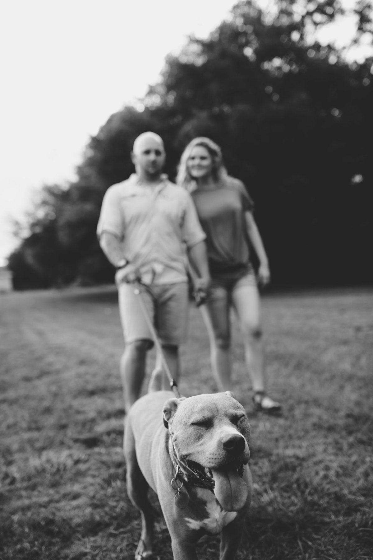 Pet photographer specializing in lifestyle photos with you and your dog in North Florida.