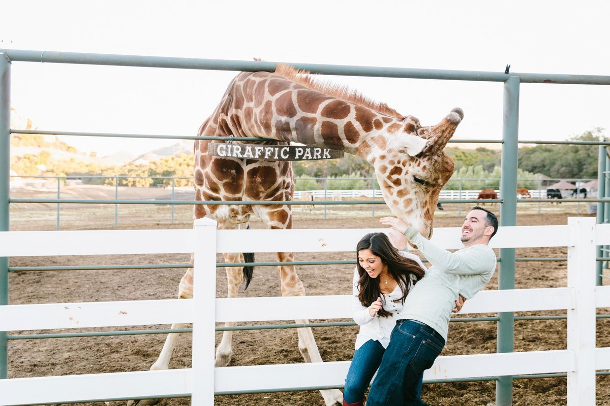 Best California Engagement Photographer-Jodee Debes Photography-214