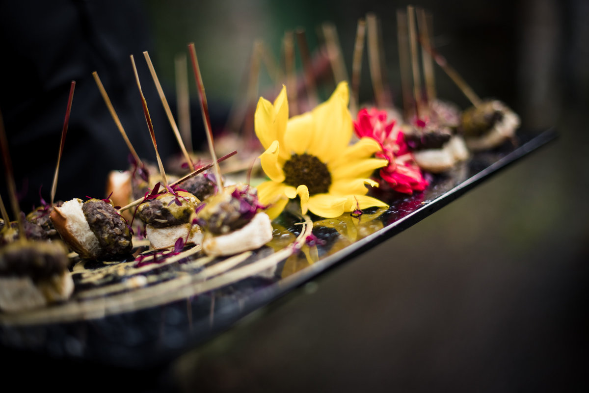 wedding_canapes_saro_callister_wedding_photography-1