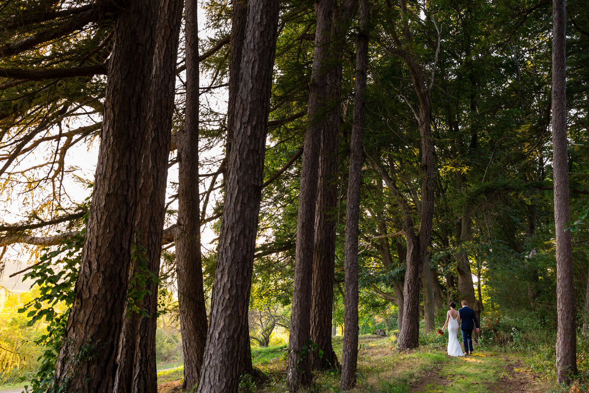 The couple walks among the trees at the Barn at Crane Estate in Ipswich Massachusetts