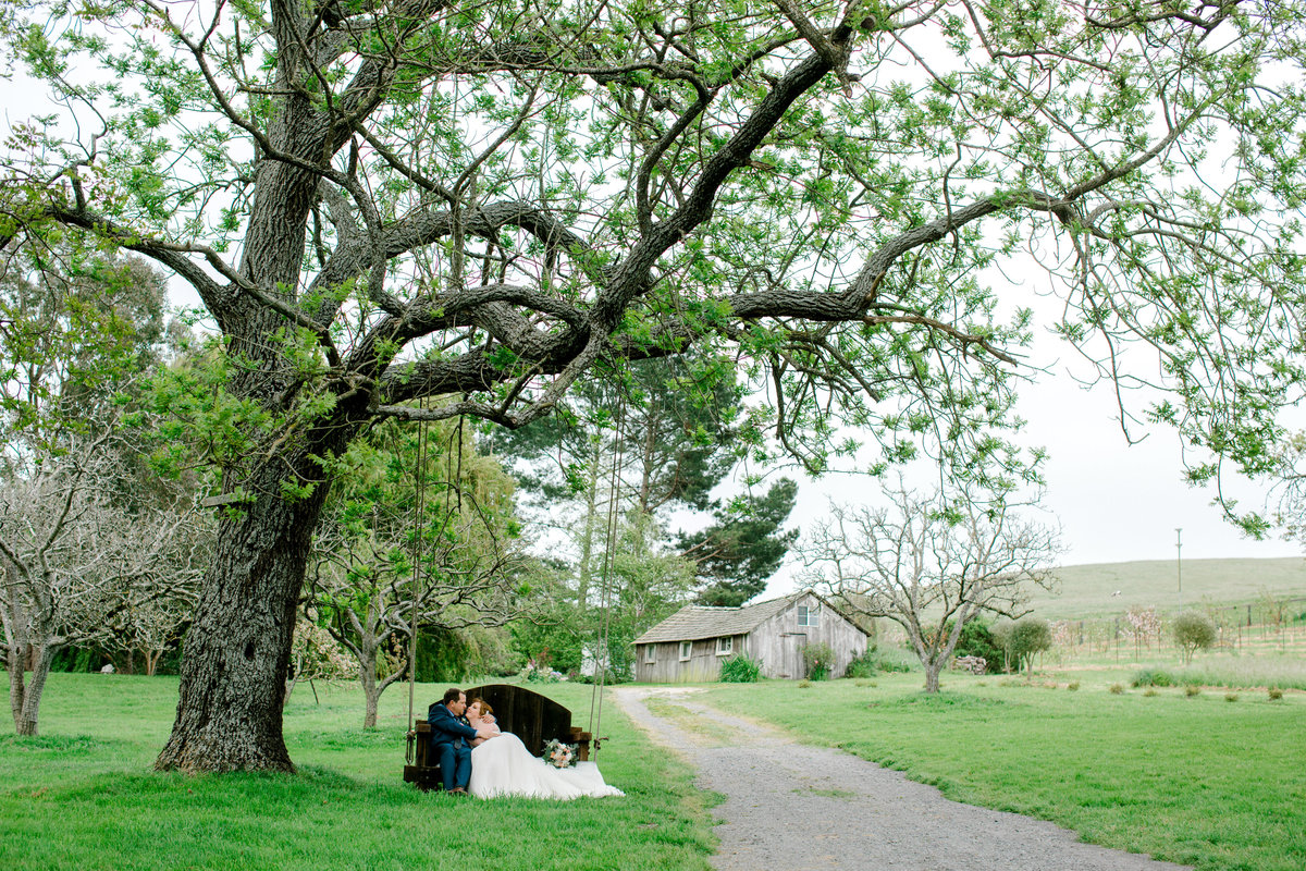 Wide view of bride and groom lounging on tree swing at Olympias Valley Estate in Petaluma California