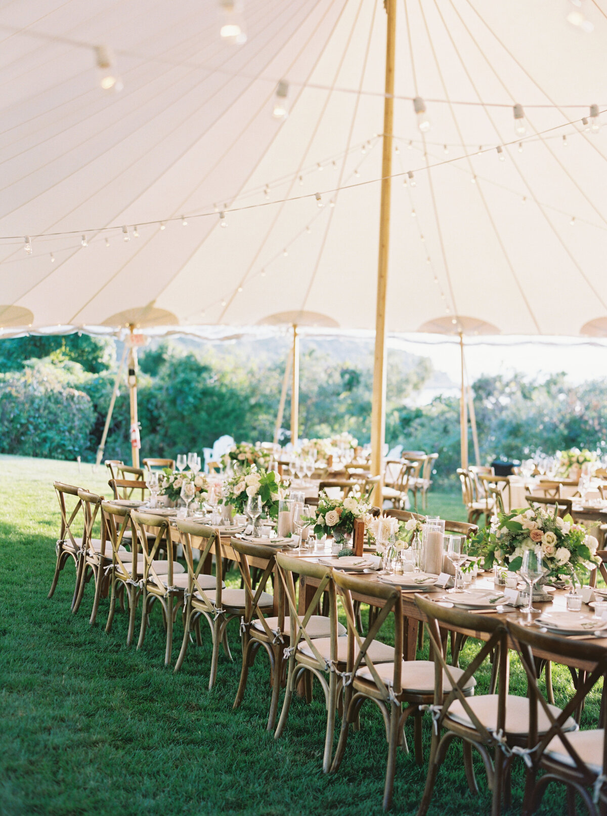 Wings Neck Tented Wedding302