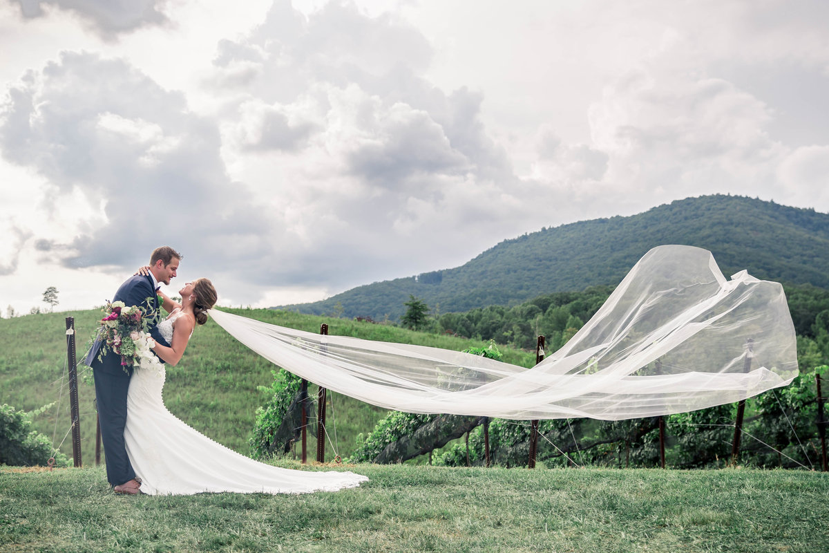yonah mountain vineyard wedding pictures