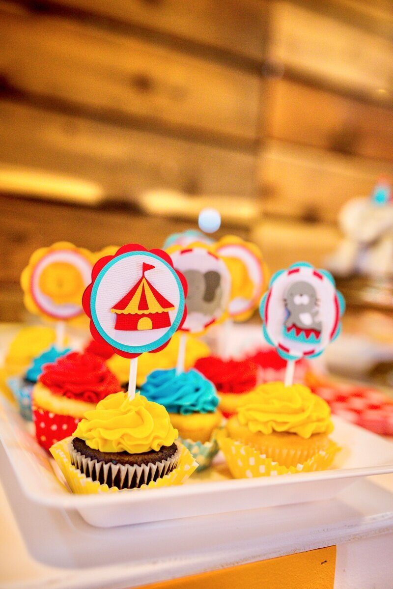 Circus Themed 1st Birthday Indianapolis Party Planner_0058