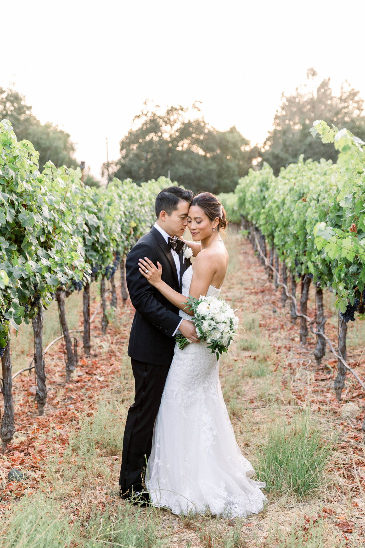 Solage_Calistoga_Auberge_Wedding-065