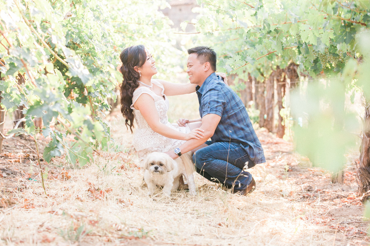 044_engagementphotos-withdog-California-vineyard