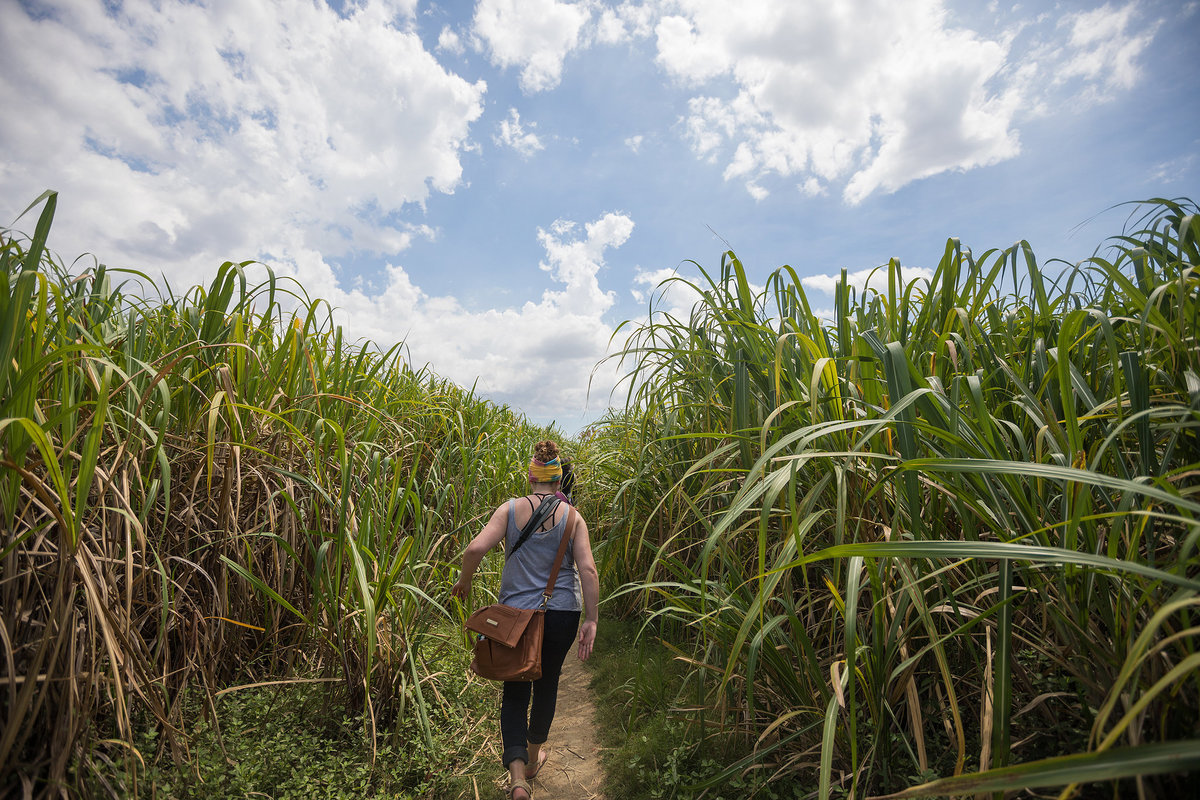 woman walking through tall grass in haiti