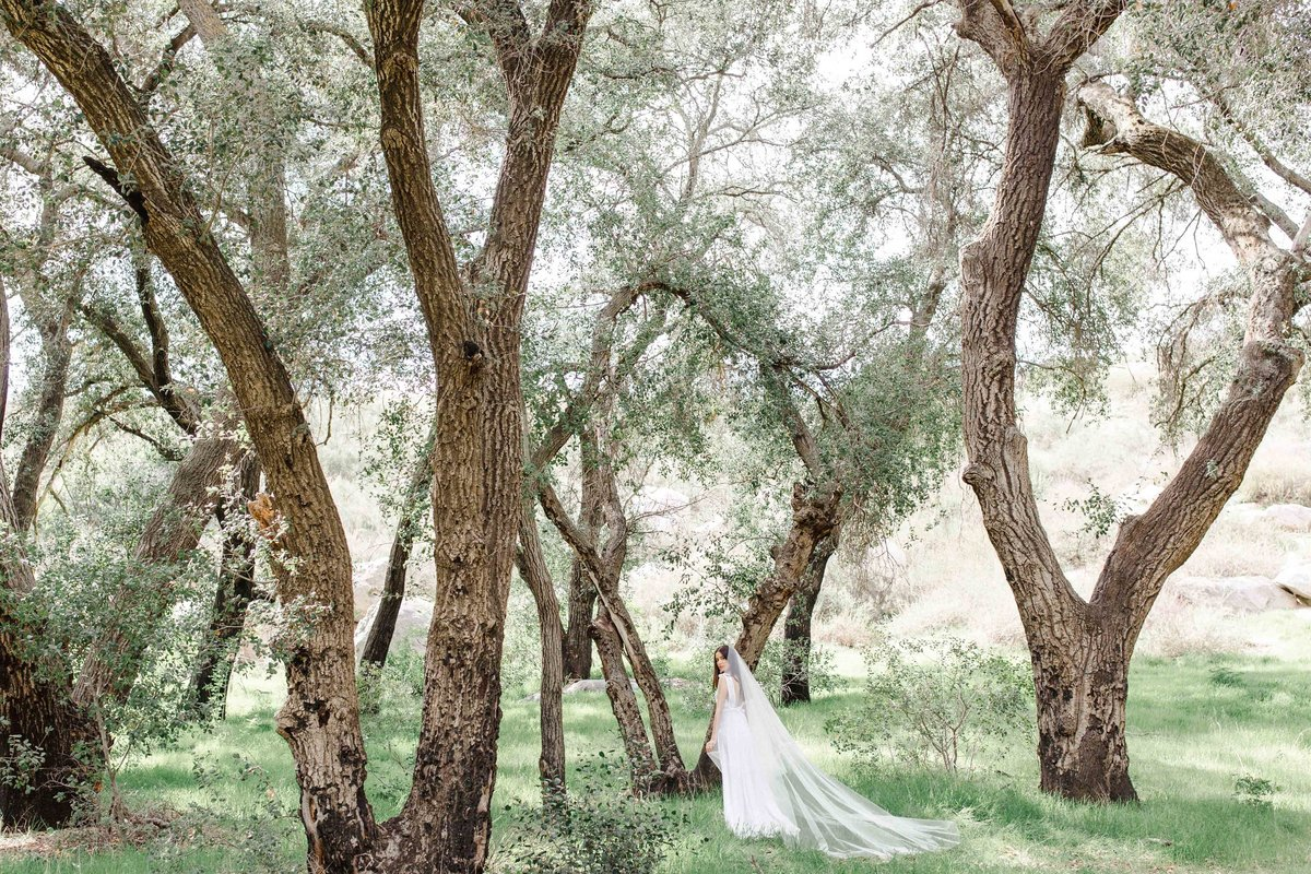 Babsie-Ly-Photography-Fine-Art-Film-Wedding-Bridal-Editorial-in-Hidden-Oaks-San-Diego-071