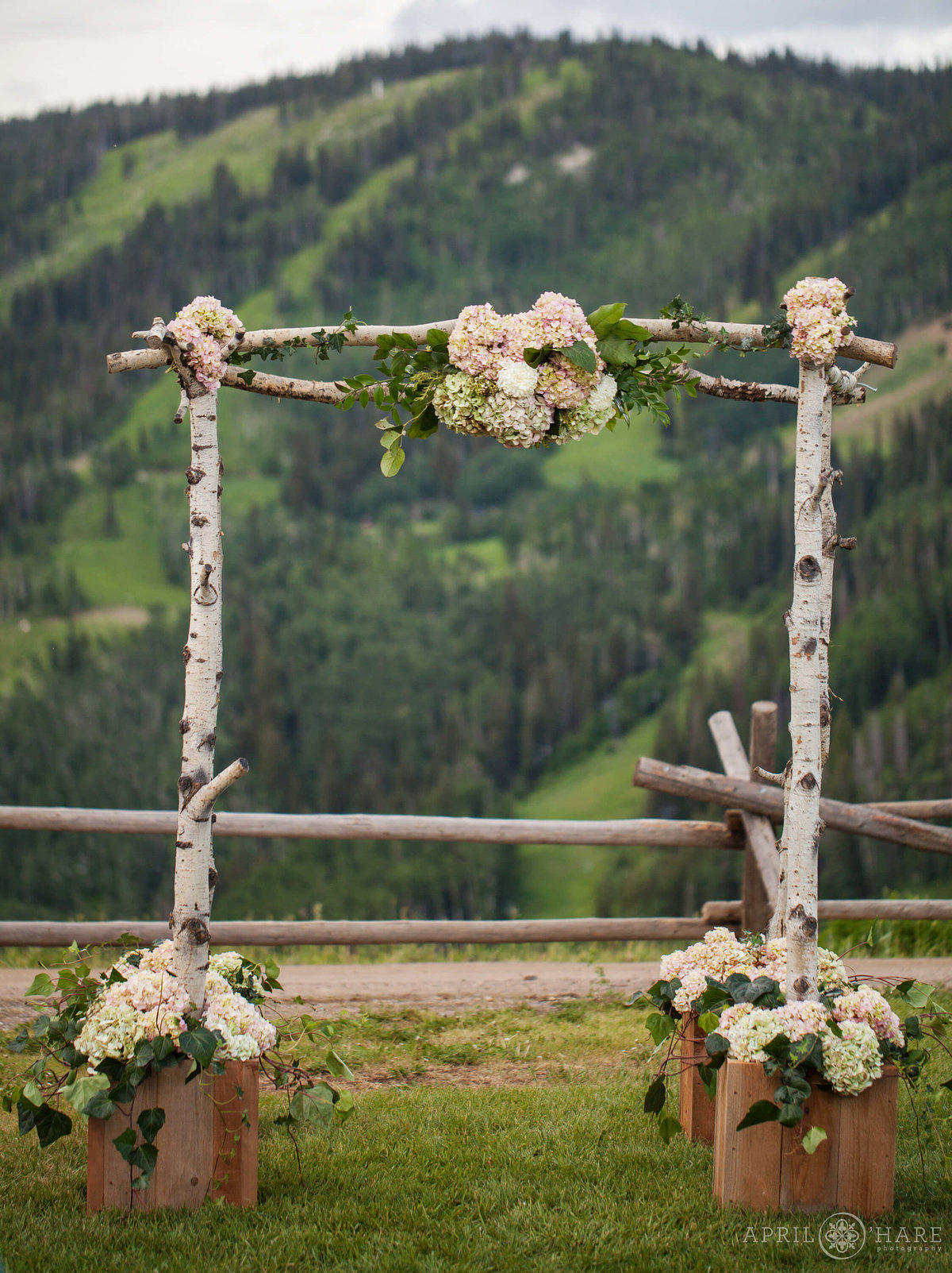 Steamboat Springs Wedding photography wedding arch birch wood with florals