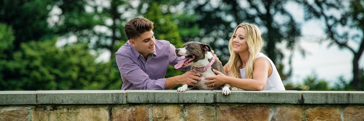 Engagement session with Pit Mix getting love