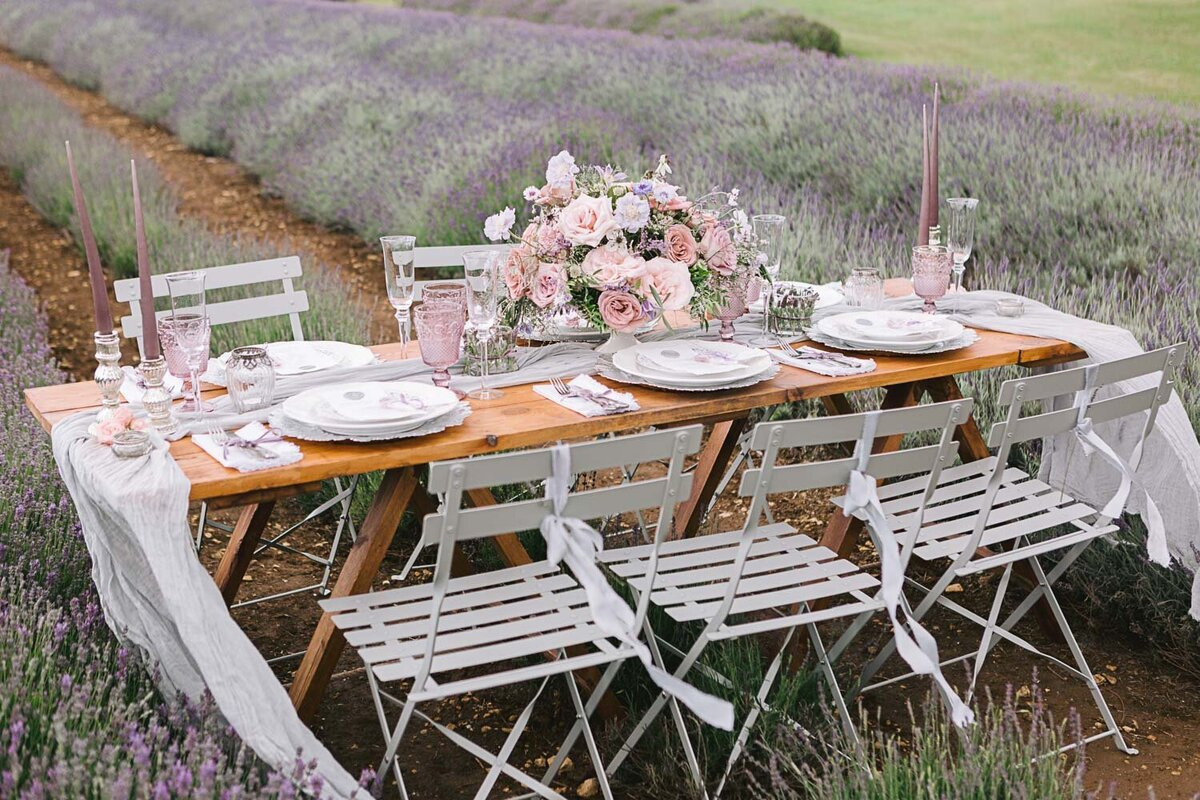 Provence Inspired Lavender Shoot-2