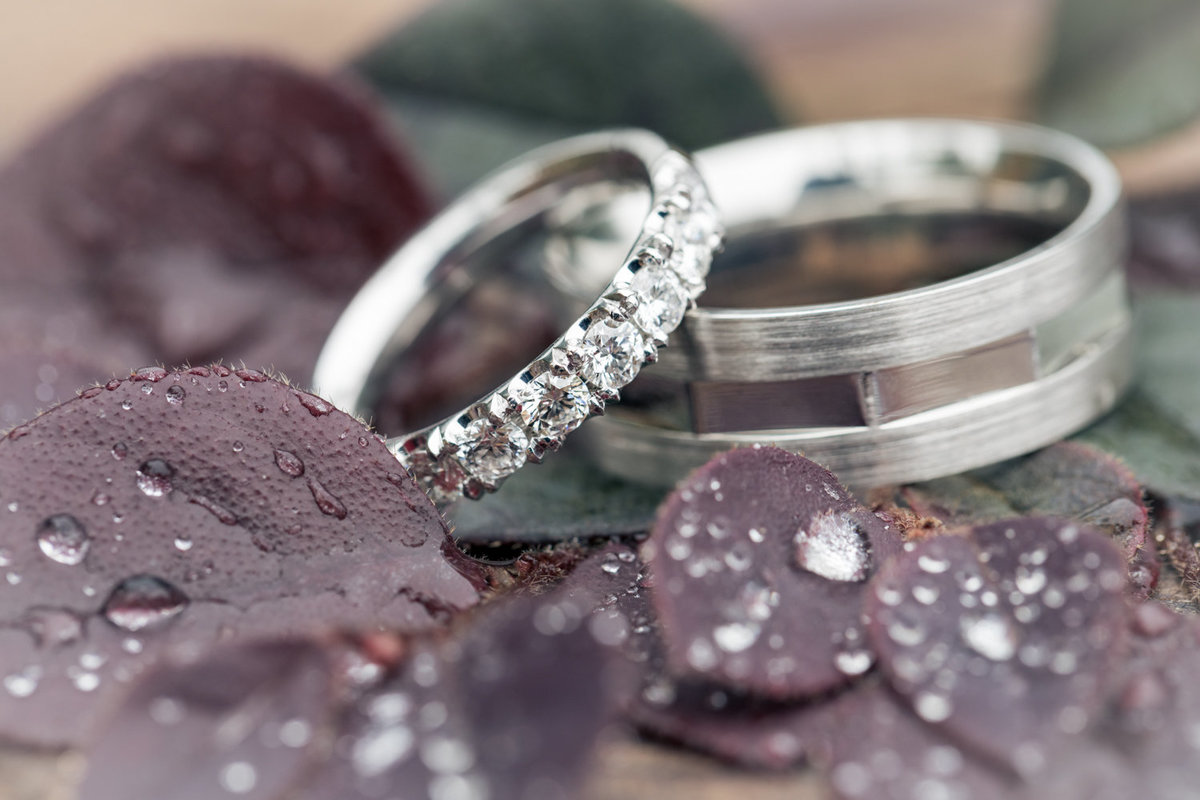 2019_Wedding_Site_Rings&Ribbons-47
