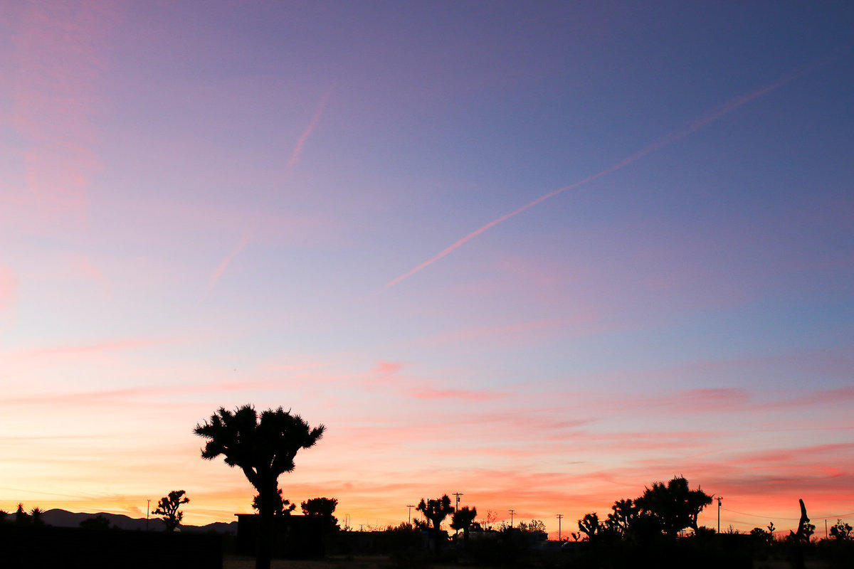 Joshua Tree sunset photgraphy