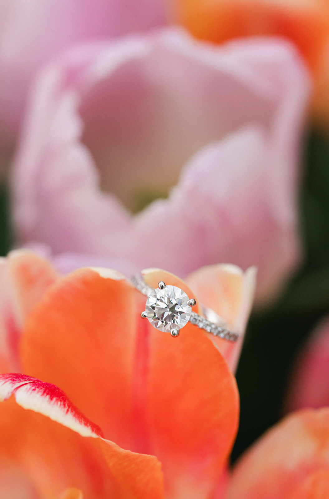 solitare-engagement-ring-on-tulips