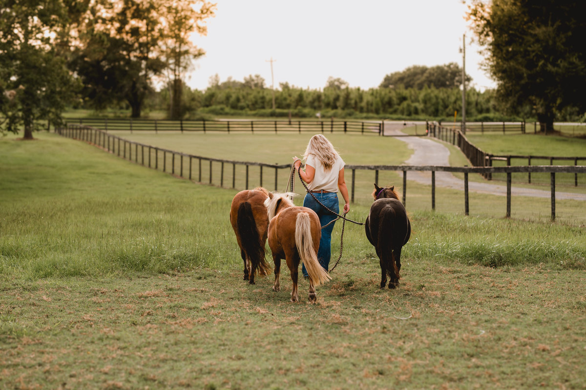 Senior girl walking her miniature horses taken by professional photographer in Florida.