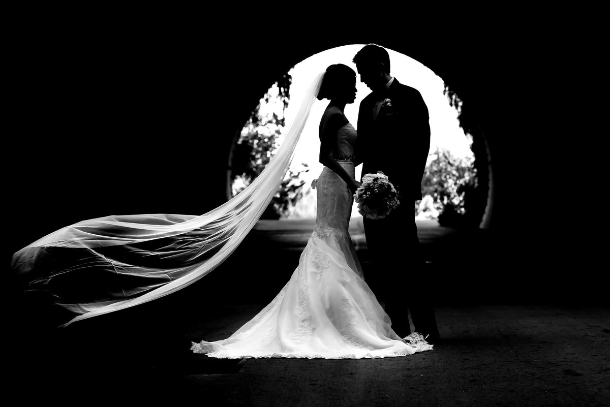 SLO bride in silhouette