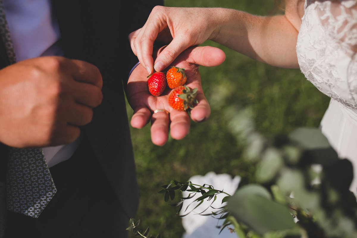 strawberries-farm-wedding-photographer