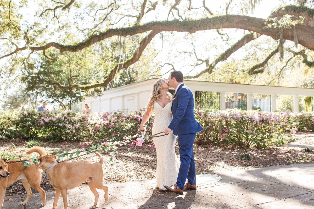 bride and groom with dogs walking in forsyth park