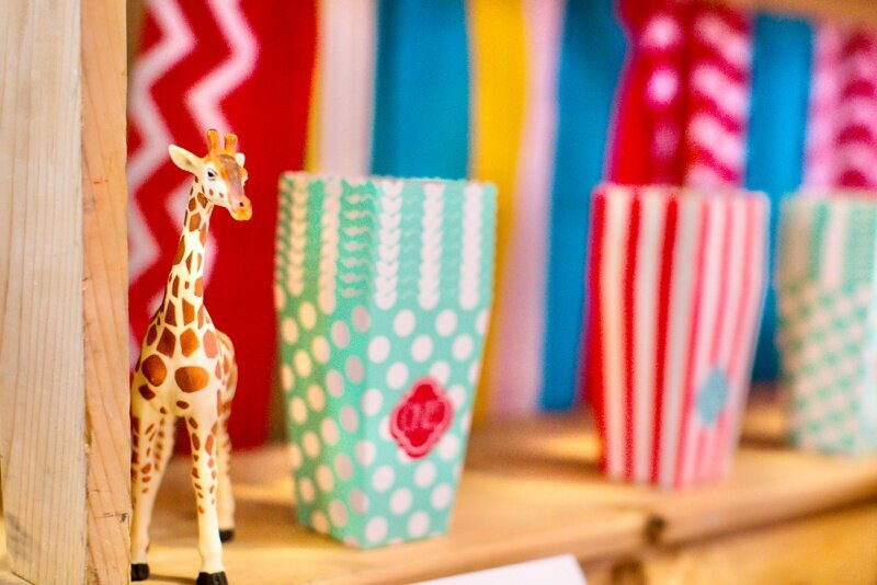 Circus Themed 1st Birthday Indianapolis Party Planner_0093