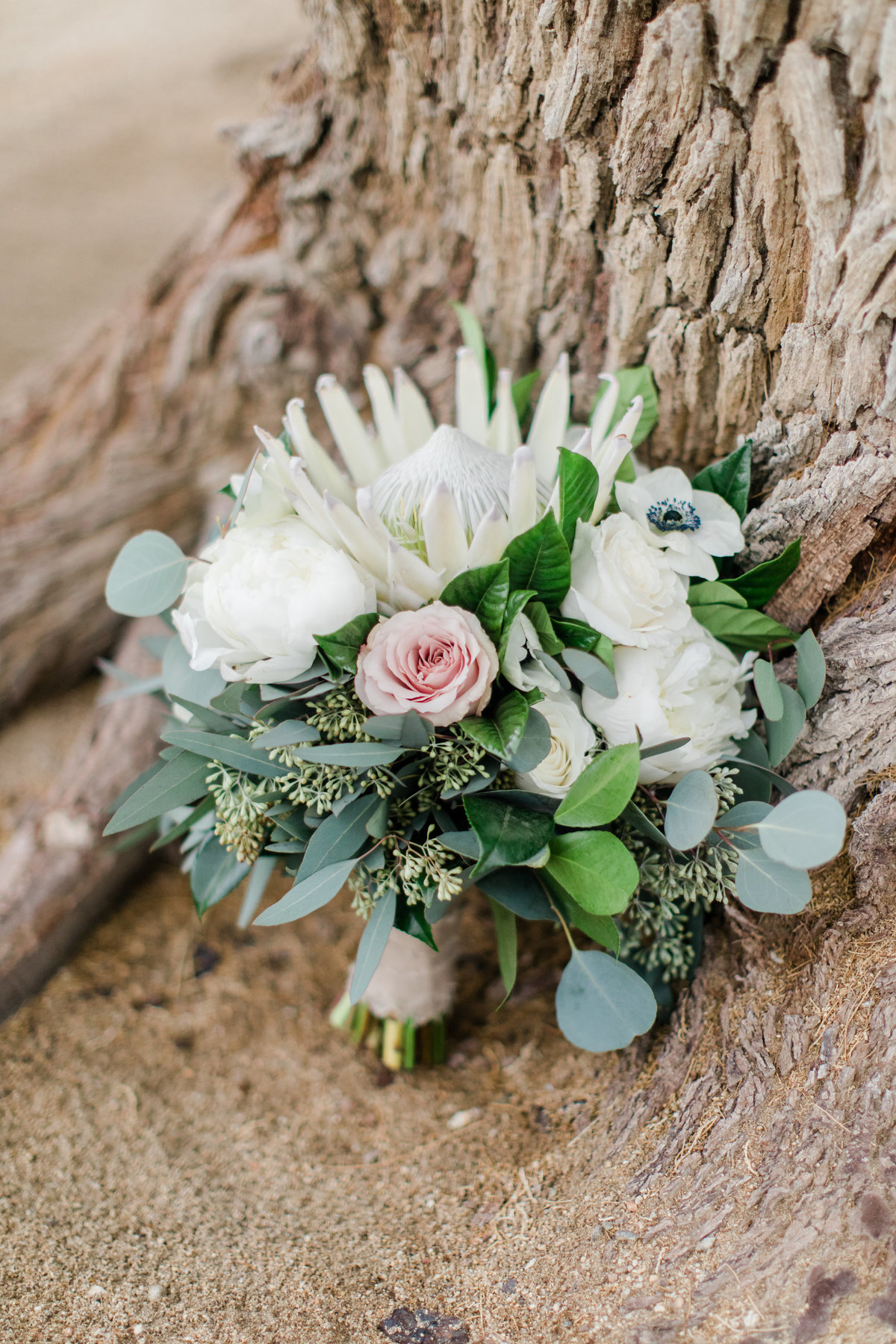 Smoke_Tree_Ranch_Palm_Springs_CA_Wedding_Photographer-5562