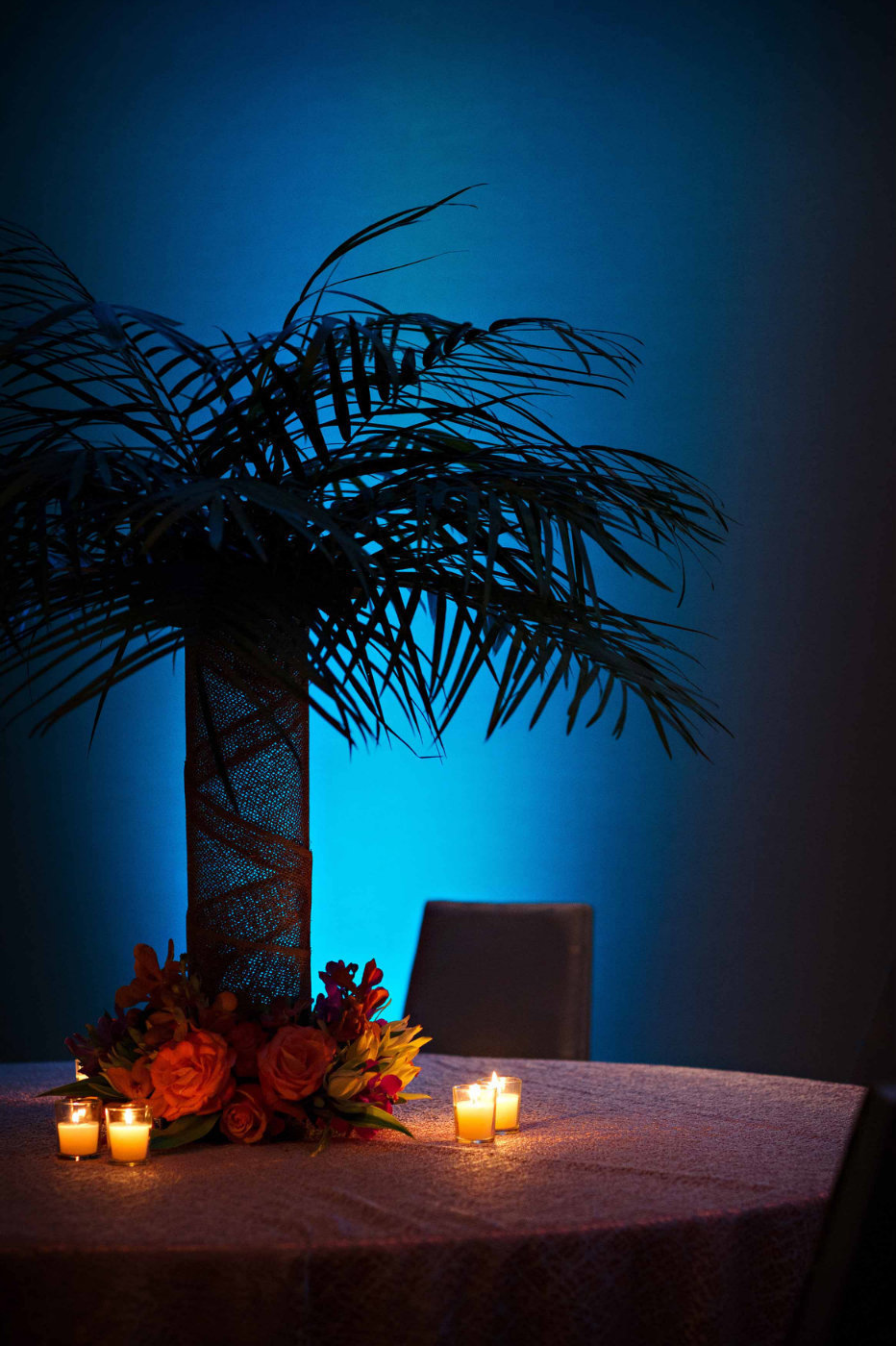 fern centerpiece with turquoise uplighting