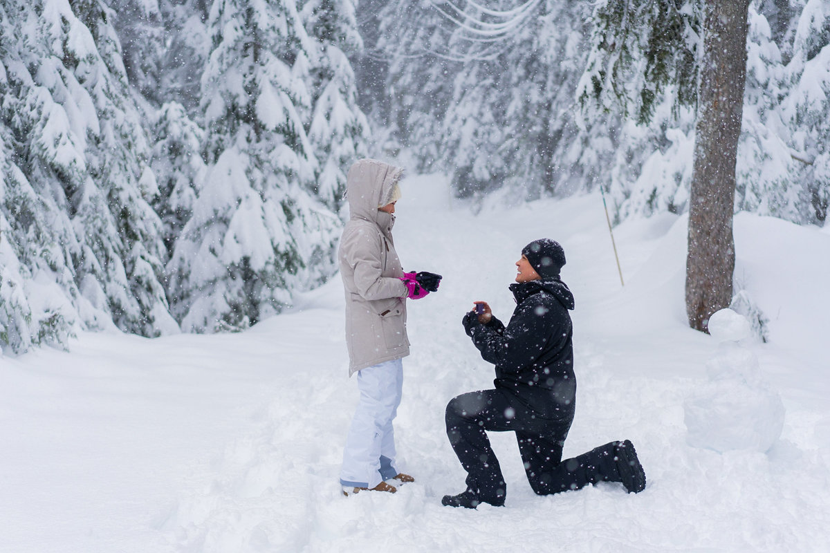 Grouse Mountain proposal during the winter time.