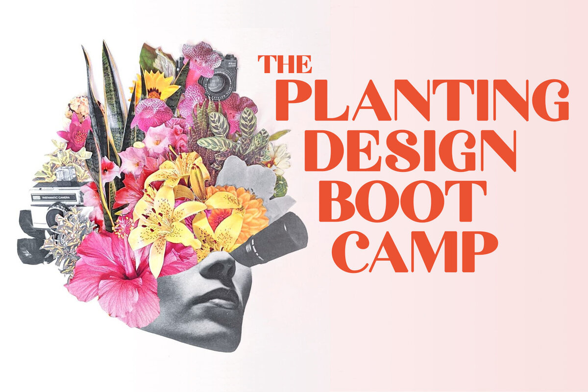 Planting Design Boot Camp Cover Art