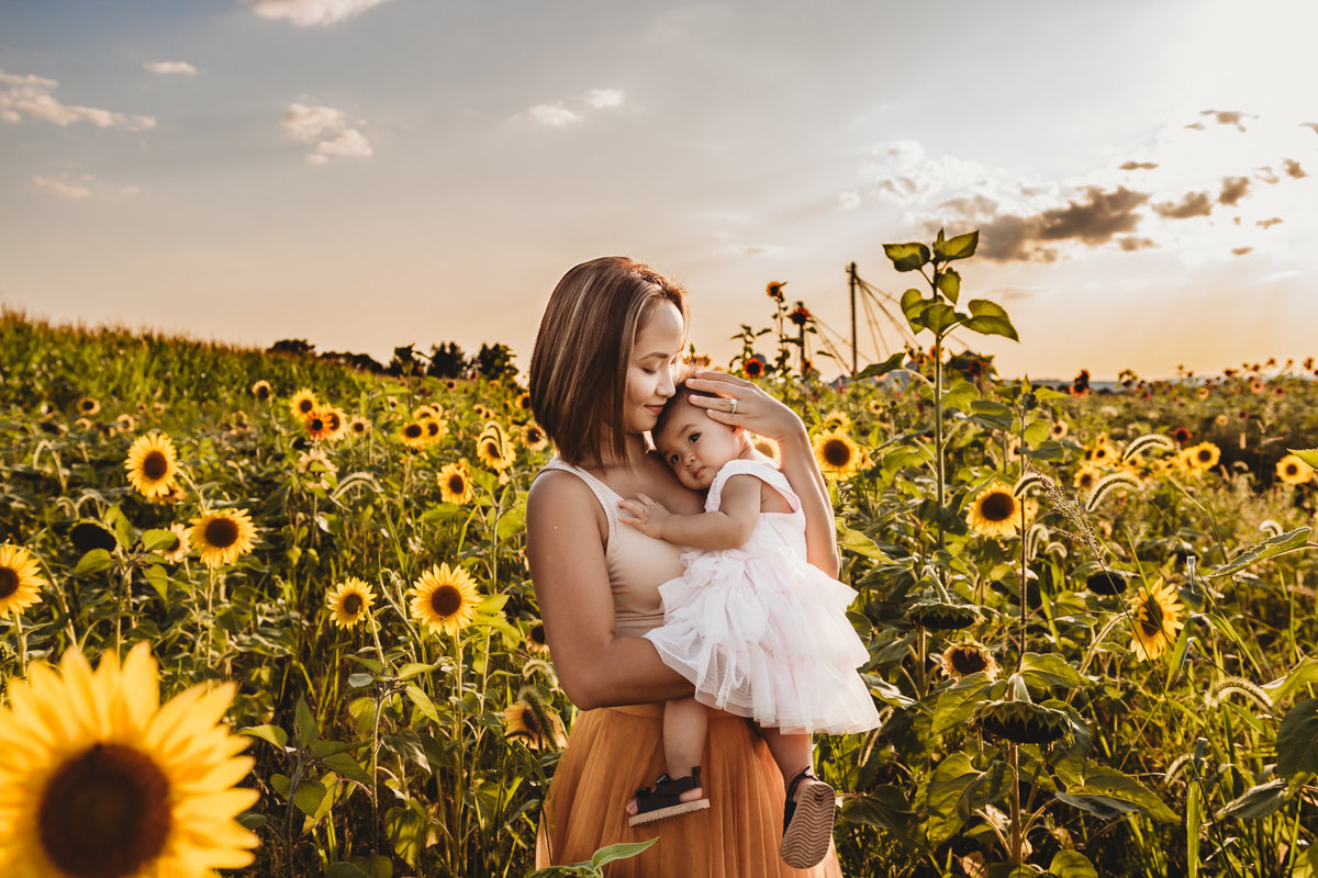 sunflower field family photographer nj