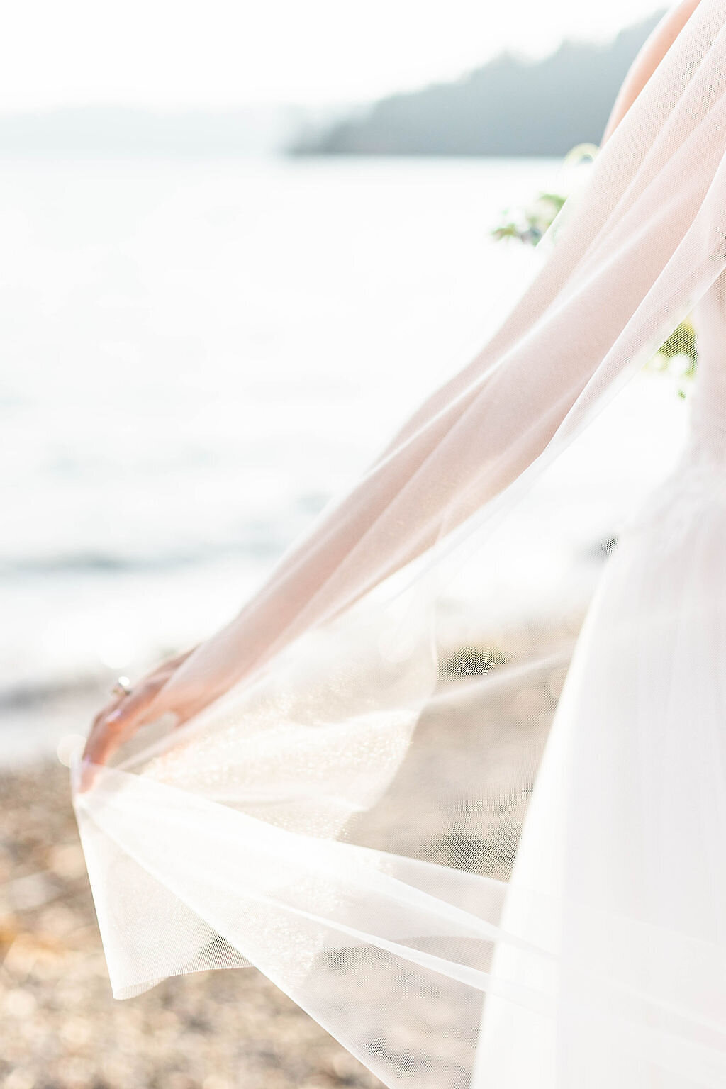 veil_wedding_photo