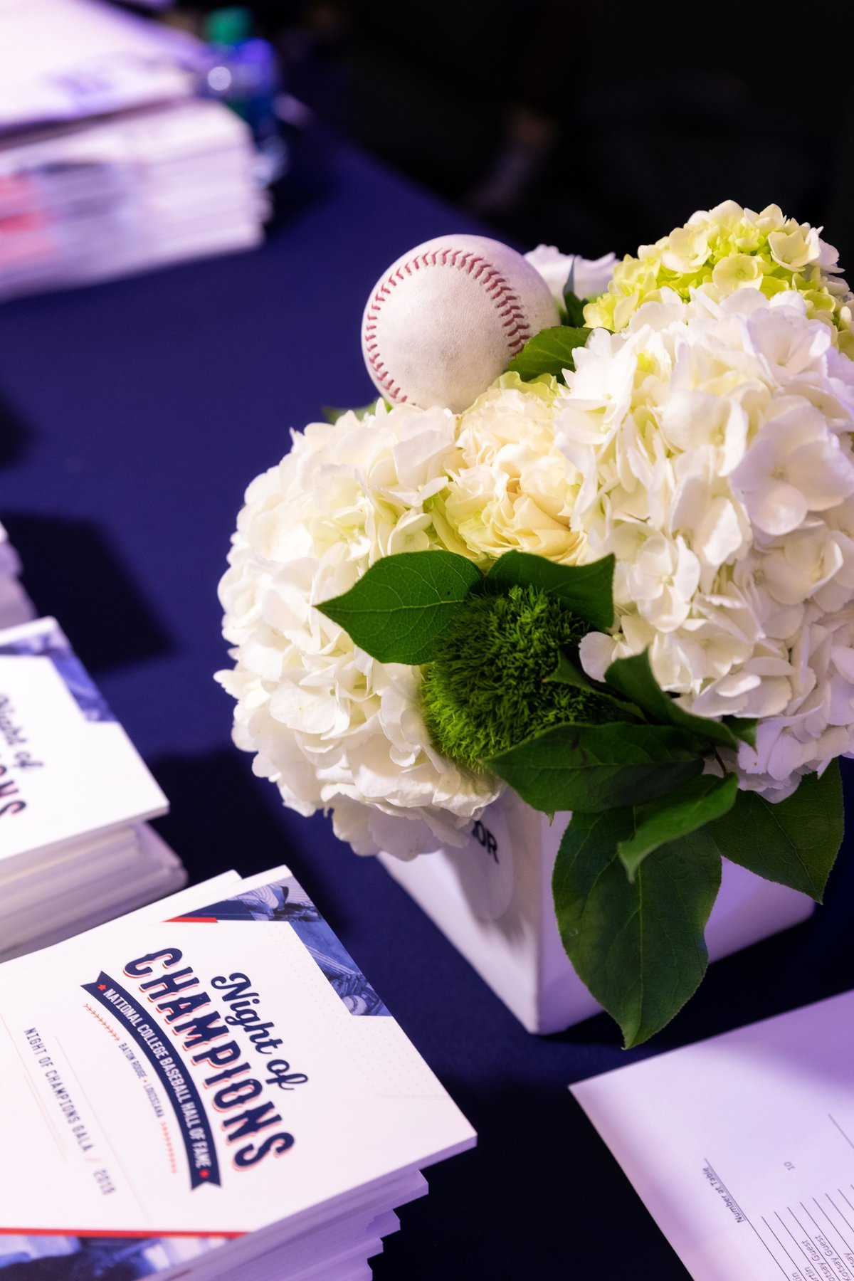Baseball centerpiece for Sports Hall of Fame