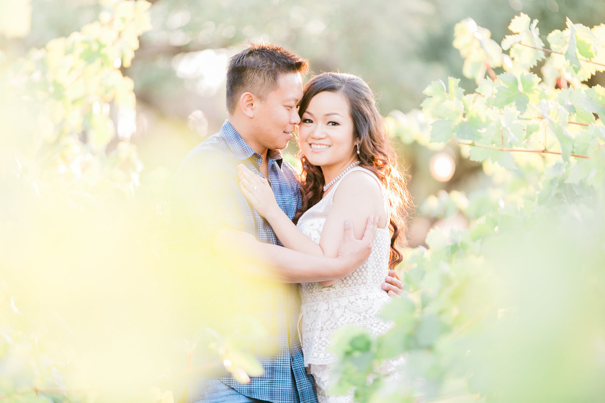 014_engagement-photos-California-vineyard