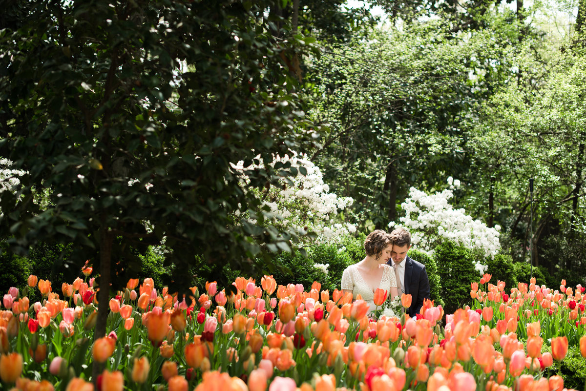 bride and groom with orange tulips in the garden