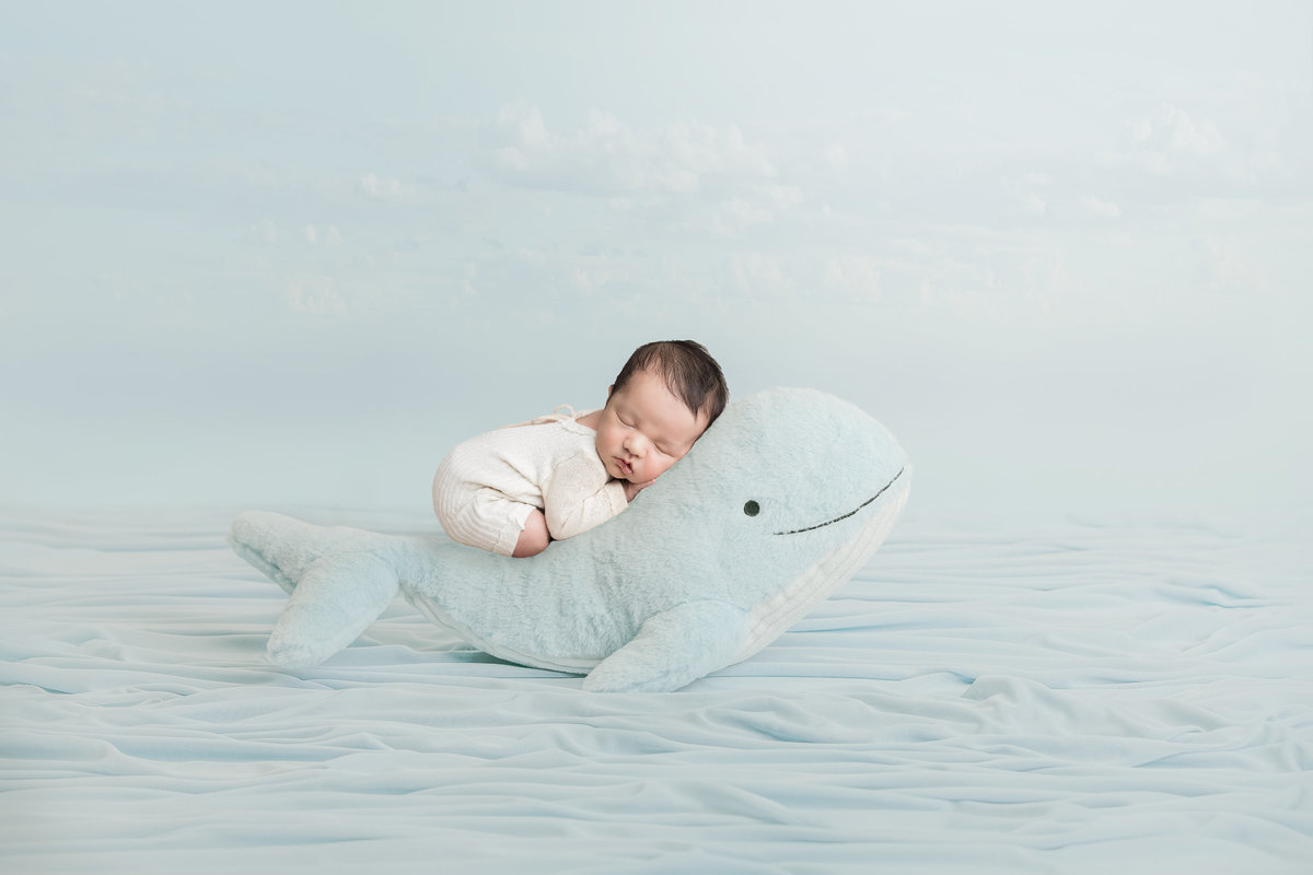 Baby boy posing on a stuffed whale