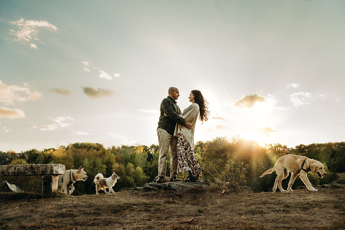 couple embraces on top of hill while three white dogs run around them