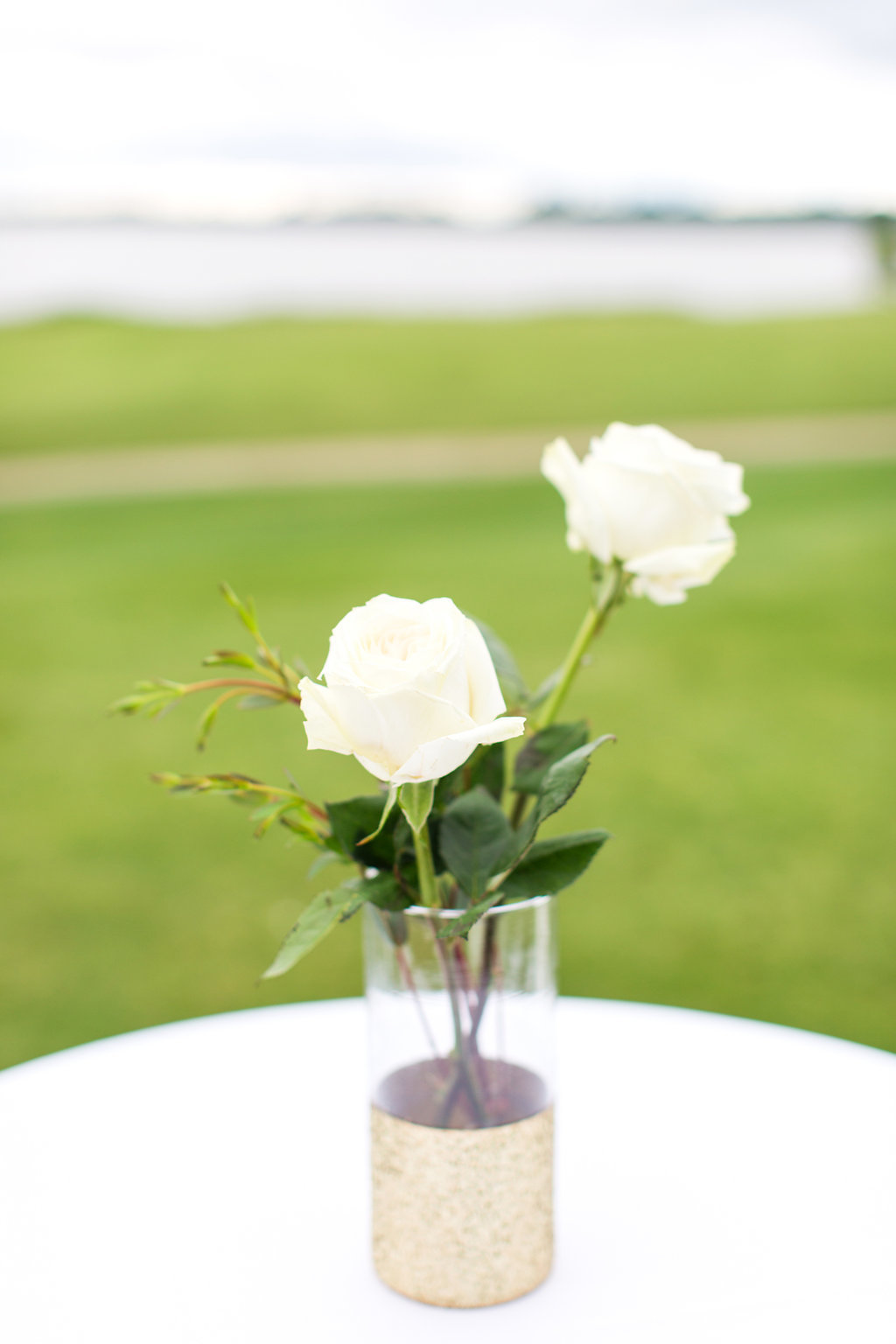 Williamsburg-va-two-rivers-country-club-wedding-photos-064