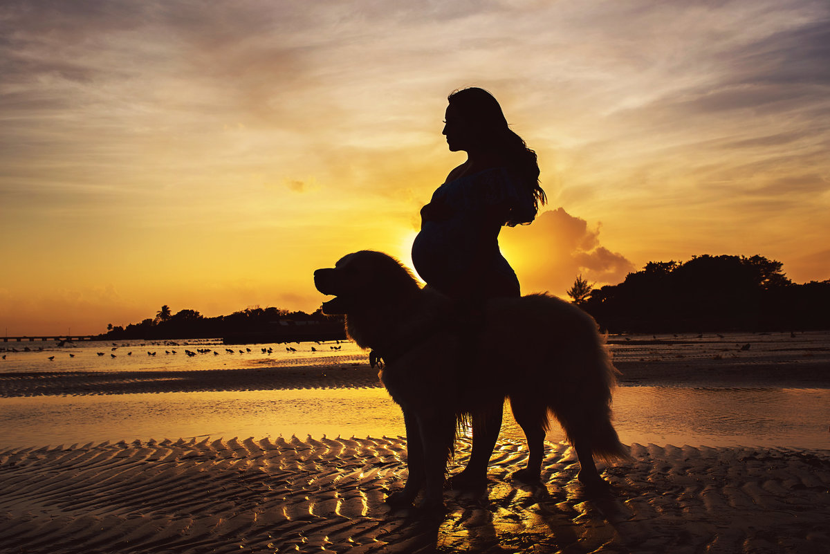 pregnancy photos beach dog ensaio de maternidade