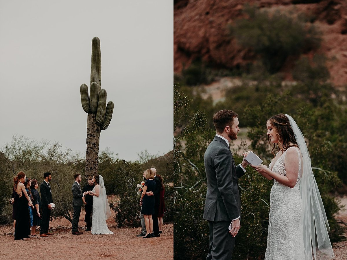 Bride and groom stand beneath a tall saguaro with a few family members for an intimate elopement