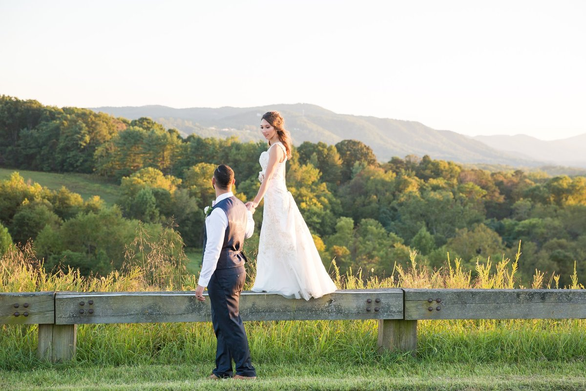 Jennifer Laura Photography bride and groom walking along the Blue Ridge Parkway in Roanoke Virginia