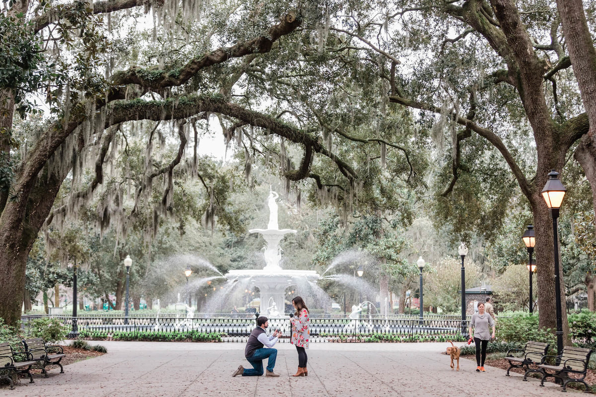 apt-b-photography-savannah-surprise-proposal-photographer-engagement-proposal-photography-11