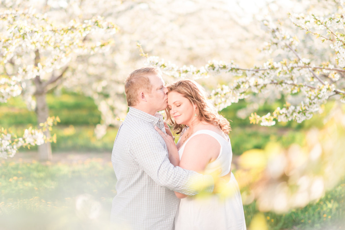 cherry blossom orchard engagement pictures in northern michigan