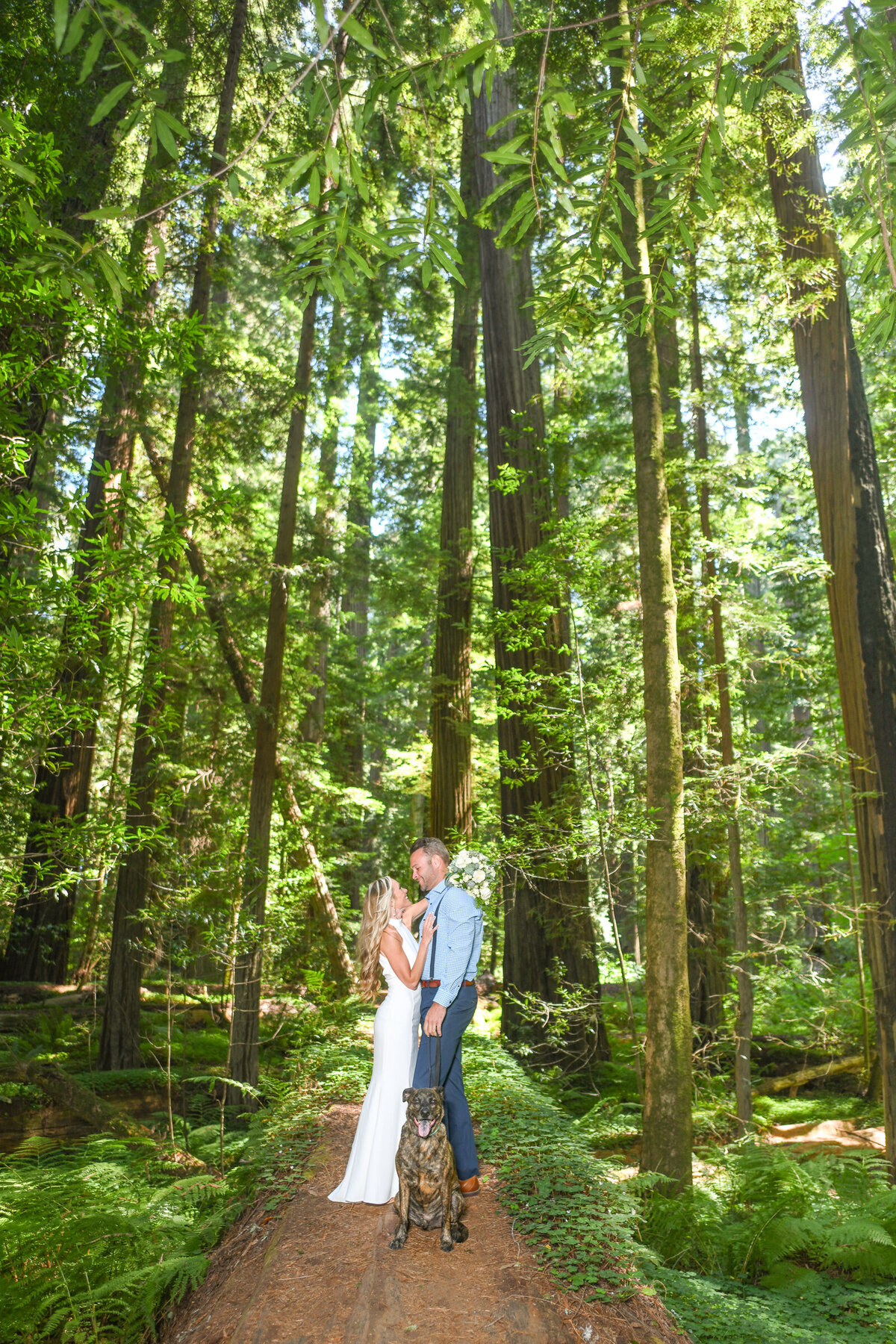 Humboldt-County-Elopement-Photographer-Redwoods-Avenue-of-the-Giants-Humboldt-Redwoods-Redwood-National-Park-Parky's-Pics-Coastal-Redwoods-Elopements-28