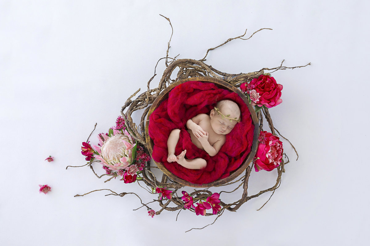 long-island-newborn-photographer