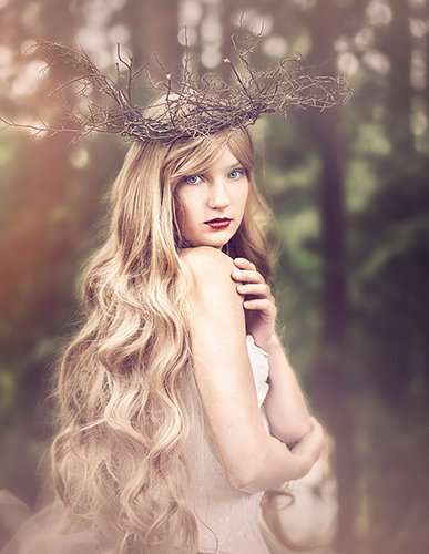 ENchantment photography-woods