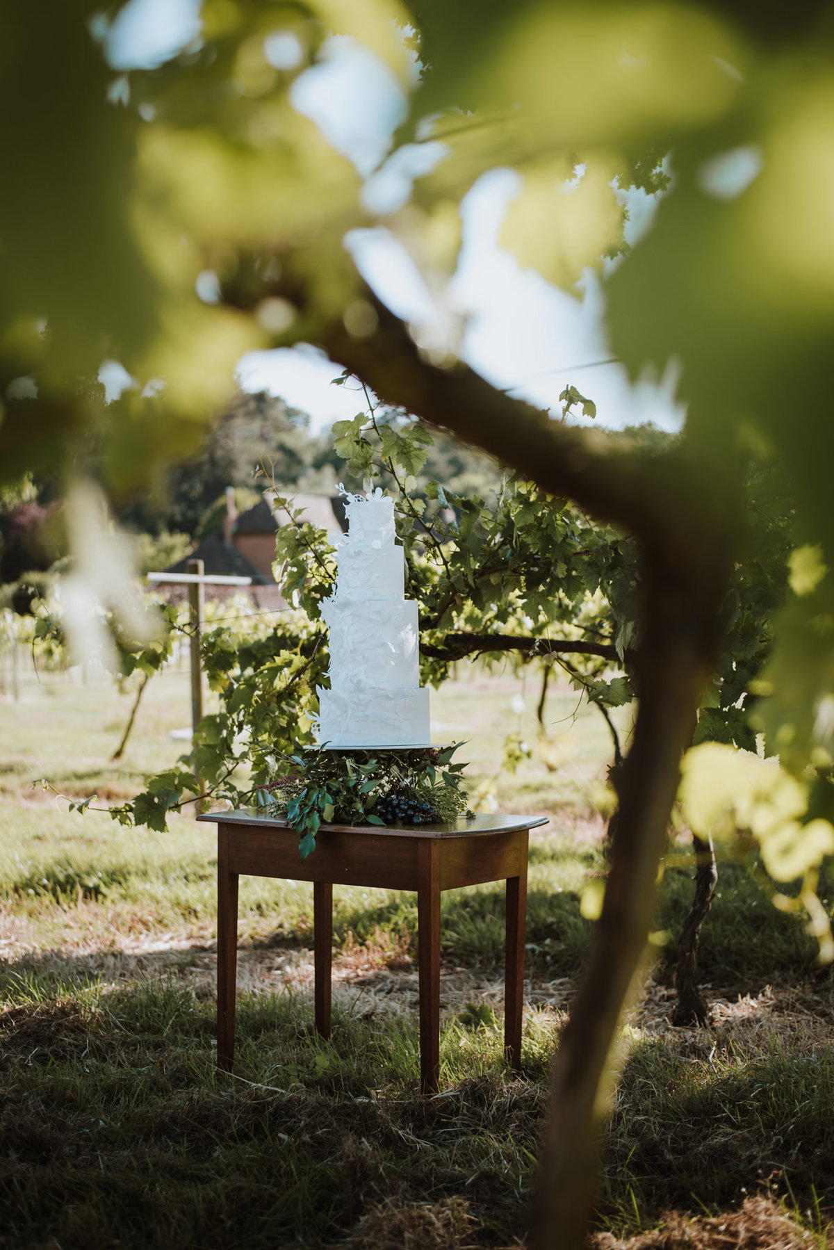The Stars Inside - Vineyard Destination Wedding - Laura Martha Photography (27)