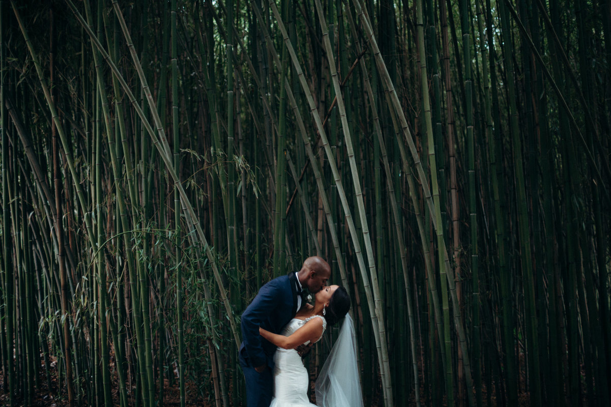 Duncan Estate wedding by Greenville SC  Wedding Photographer Simply Violet Photography