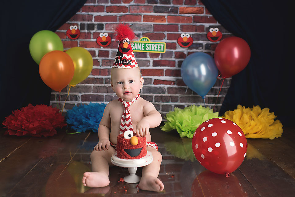 ct-elmo-smash-cake-photographer-elizabeth-frederick-photography