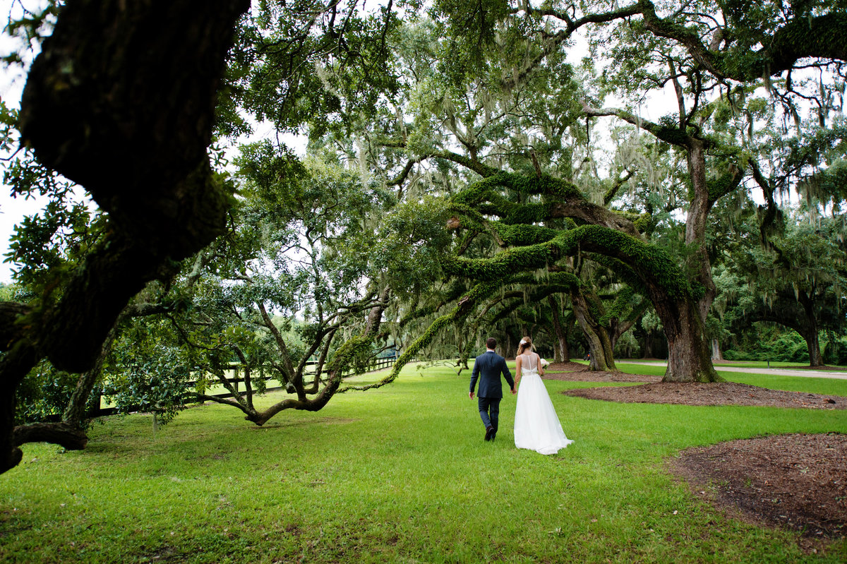 bride and groom under oak trees at boone hall plantation