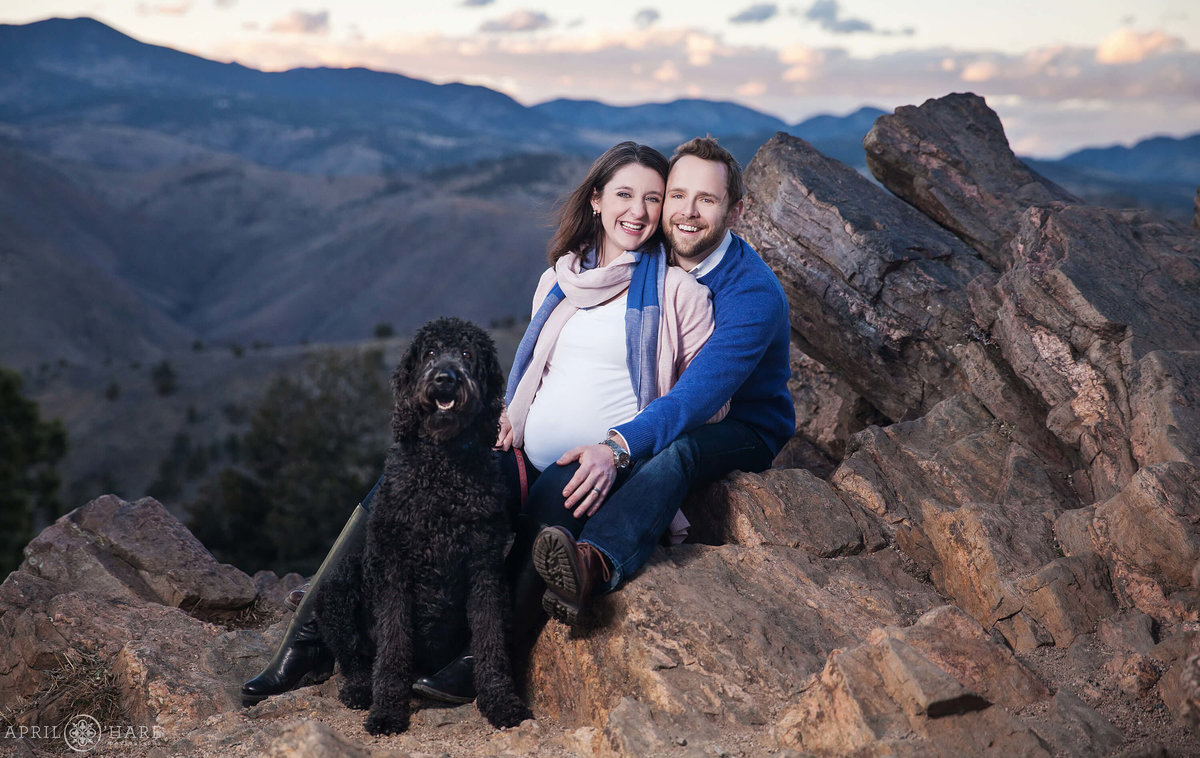 Cute Colorado Maternity Photography Lookout Mountain with Labradoodle Dog