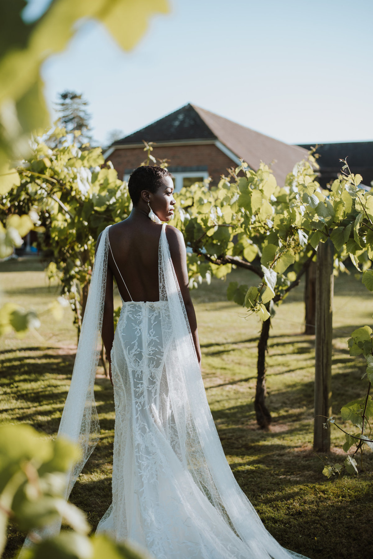 The Stars Inside - Vineyard Destination Wedding - Laura Martha Photography (48)