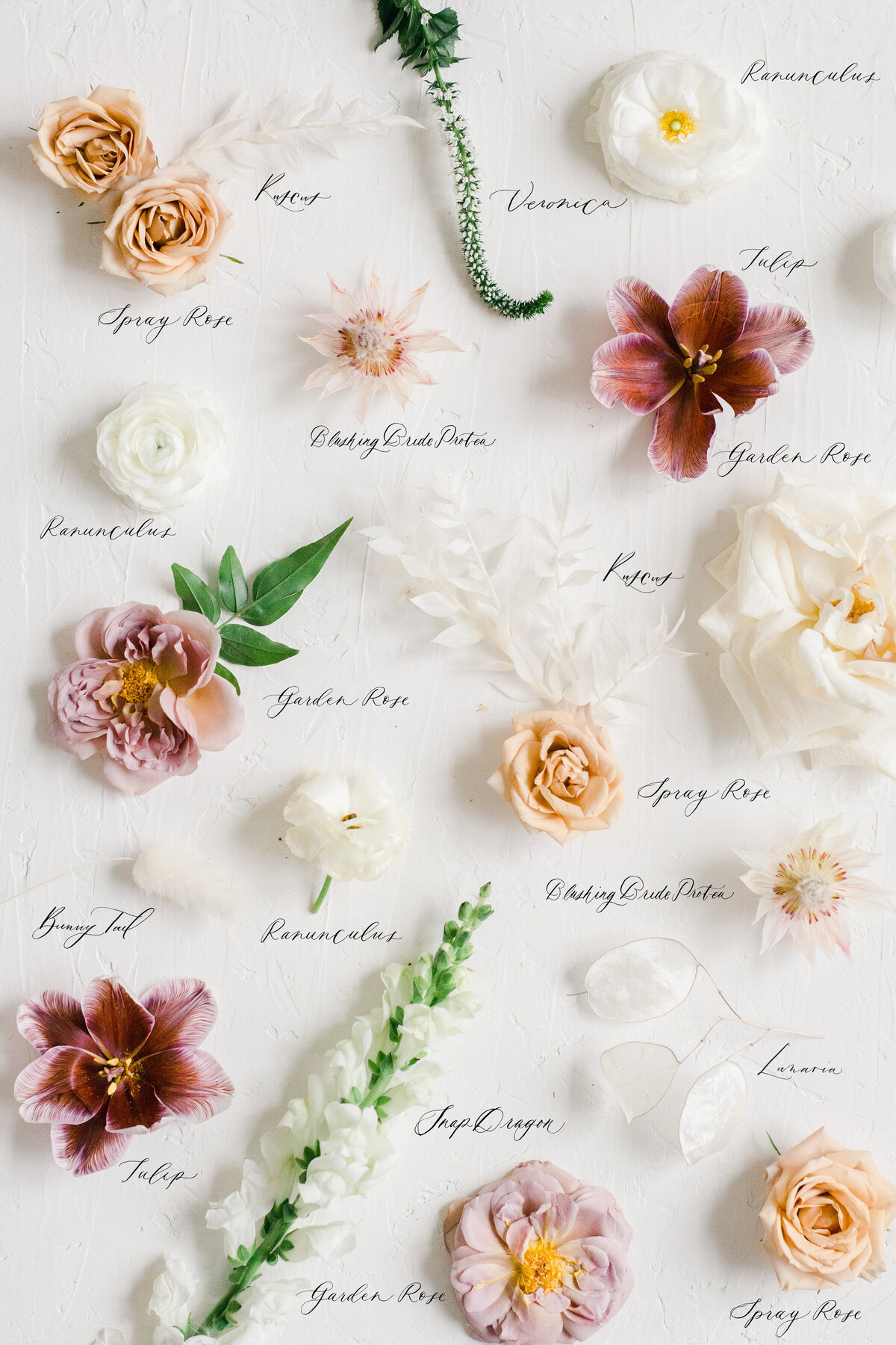 styled flowers in a flatlay, studio fleurette with Marit Williams Photography